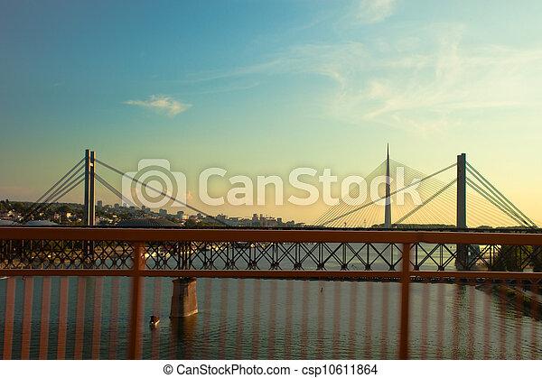 bridges in Belgrade - csp10611864
