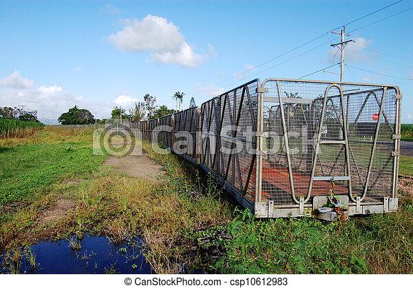 Queensland sugar cane railways - csp10612983