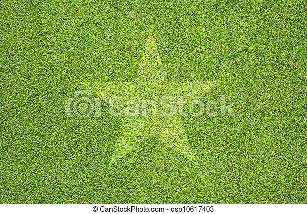 Star on green grass texture and background