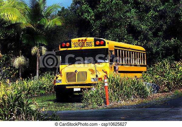 End of School day on Big Island