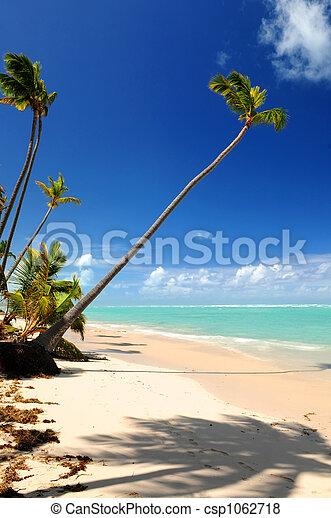 Tropical beach - csp1062718