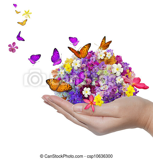 hand holds flower spill many flowers and butterfly - csp10636300