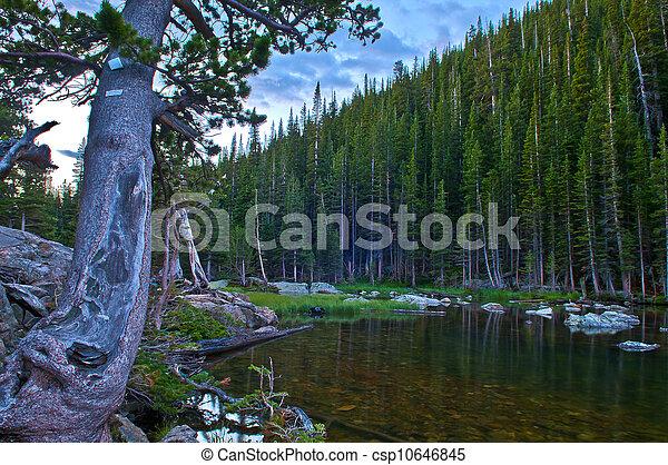 Dream Lake - csp10646845