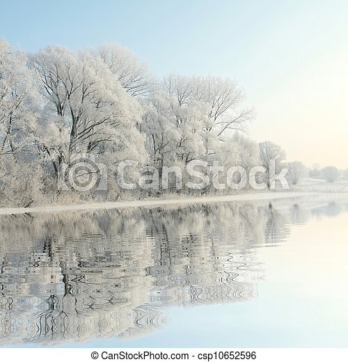 Winter trees on the lake shore