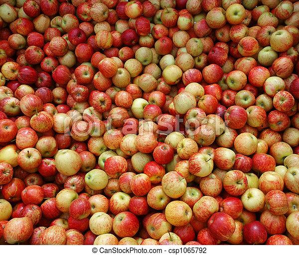 New Zealand Apples - csp1065792