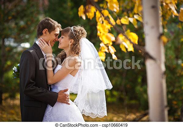 婚禮 - csp10660419