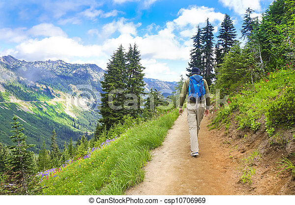 Male hiker walking up the trail in the mountains near Mt. Rainier. - csp10706969
