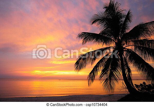 Sea view before the sunrise - csp10734404
