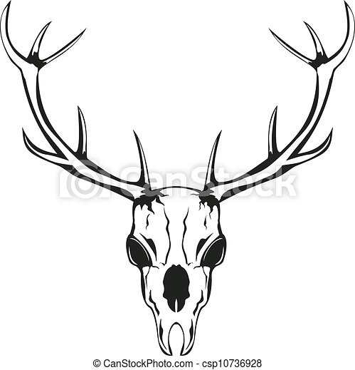 Vector Illustration of skull of deer with horns - Vector an ...