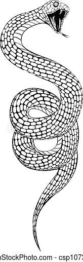 ball python head drawing