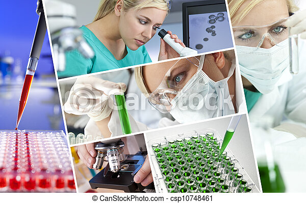 Female Scientist Doctor in Research Laboratory - csp10748461