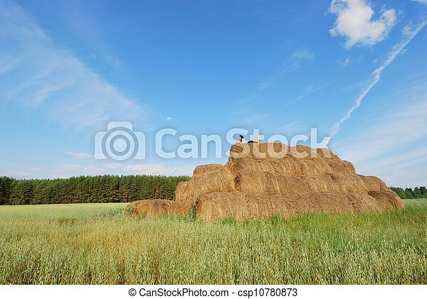 Woman on hay bale in summer field - csp10780873