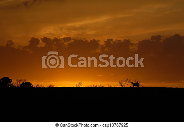 landwirtschaft, ende, tage - csp10787925