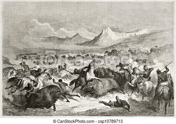 Buffalo hunt - csp10789713