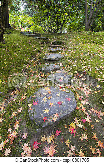 Fallen Maple Tree Leaves on Stone Steps and Moss - csp10801705