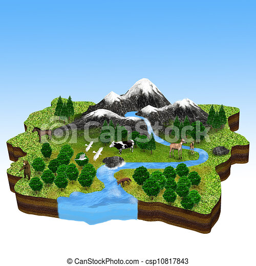 kasownik, fauna, flora, zasoby - csp10817843