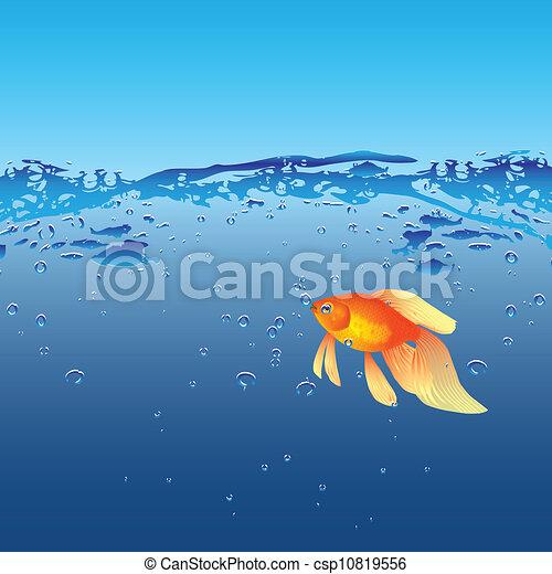 Stock illustrationen von goldfisch gold fische ihr for Lebensraum fische