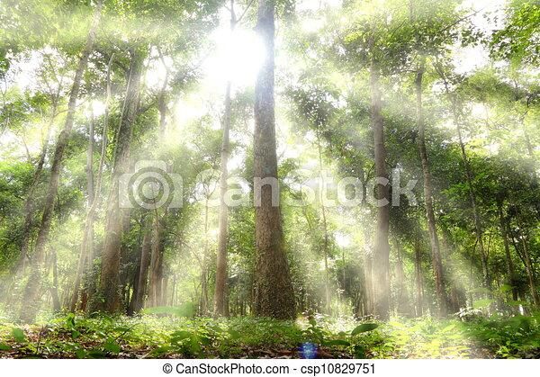 Sun Shining Drawing The Sun Shining Through The