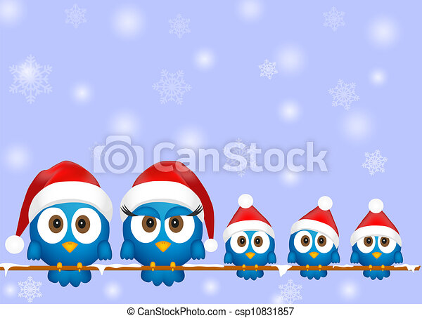 Cute christmas birds - csp10831857