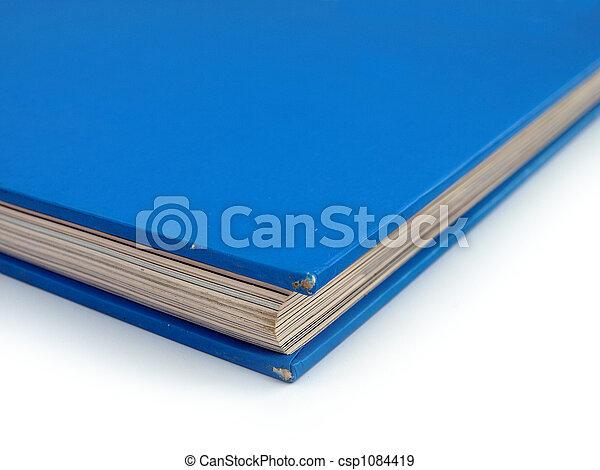 Blue Book Corner Detail Democrat Politics concept - csp1084419
