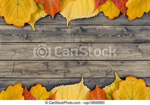 autumn leaves on the rural wood planks - csp10849993