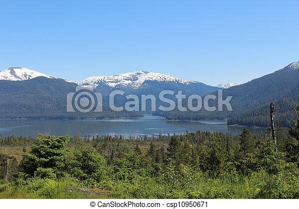 Alaska Wilderness Landscape - csp10950671