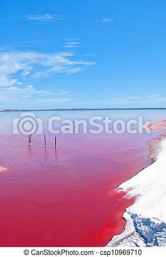 Strange colored Water at Pink Lake, Western Australia - csp10969710