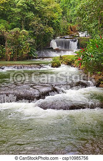 Jamaica. Dunn's River waterfalls   - csp10985756