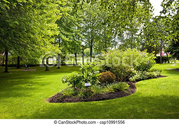 Garden in park - csp10991556