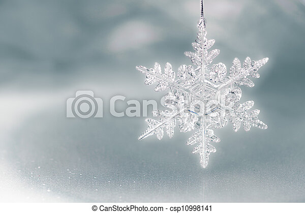 Snow Flake Holiday Background - csp10998141
