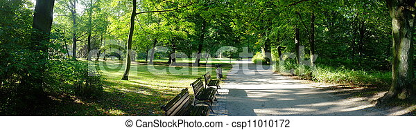 Park in autumn time - csp11010172