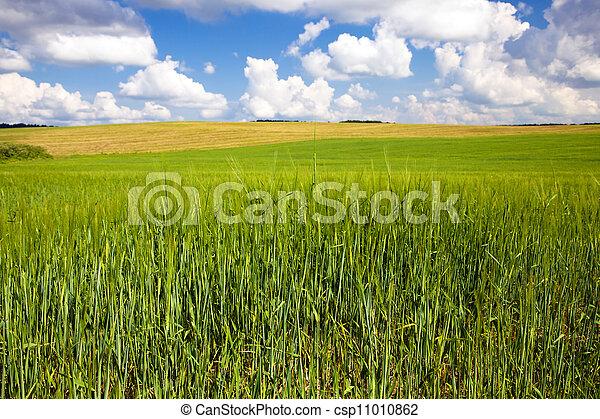 agriculture  - csp11010862