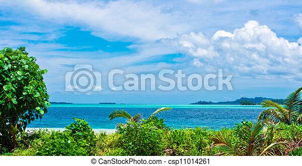 tropicale, Isole, Deserto, paesaggio - csp11014261