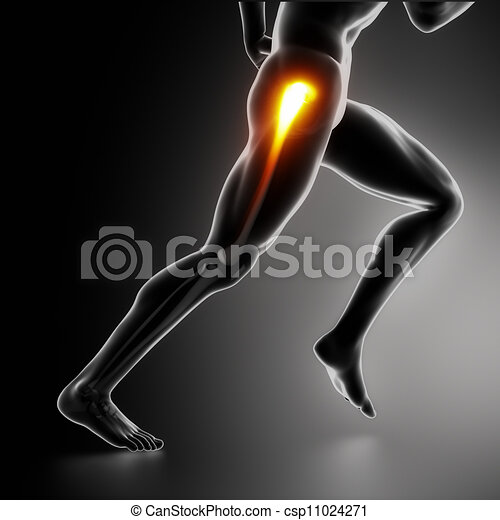 Sports hip injury koncept - csp11024271