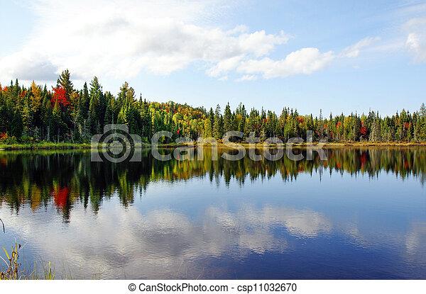 Fall season at a northern lake - csp11032670