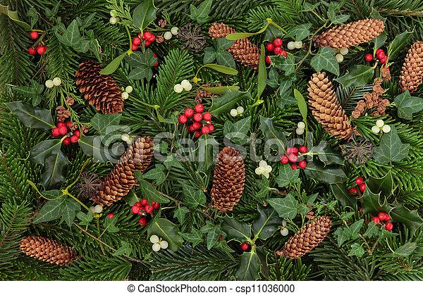 Winter Flora and Fauna - csp11036000