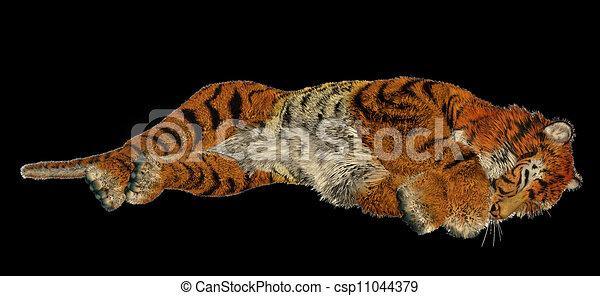 illustrations de tigre dormir grand beau tigre dormir dans noir fond csp11044379. Black Bedroom Furniture Sets. Home Design Ideas
