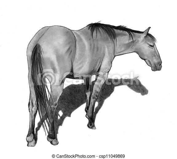 Archivio illustrazioni di standing matita cavallo for Cavallo disegno a matita