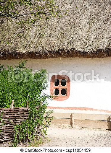 Beautiful rural cottage in summer  - csp11054459