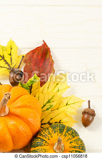 Fall Leaves With Gourds And Accorns - csp11056818