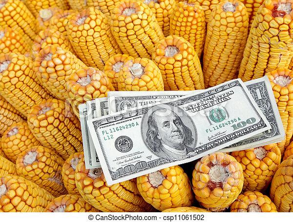 landwirtschaft - csp11061502