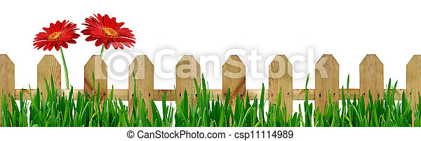 Fence with grass and flowers - csp11114989