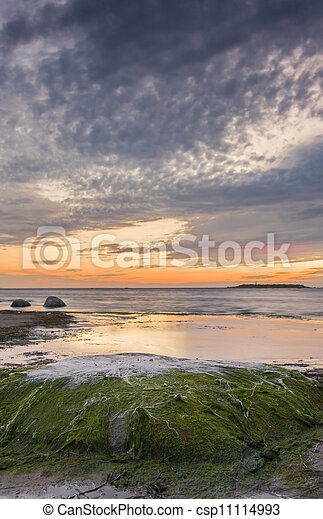 Large rock covered with green algae and white plants at sunset at sea - csp11114993