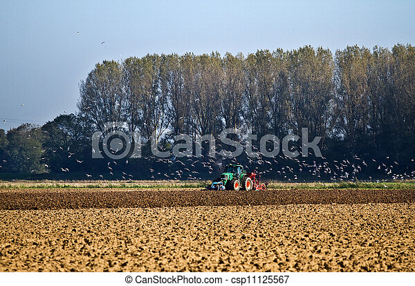 Agriculture - Tractor plough up the field - csp11125567