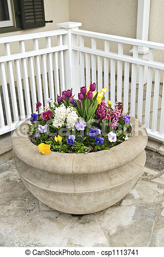 Stone planter with spring flowers - csp1113741