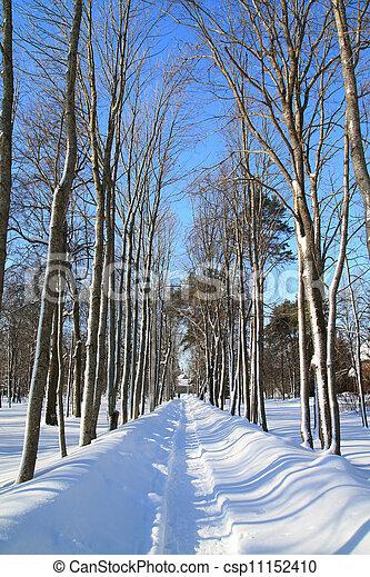snow lane in town park - csp11152410