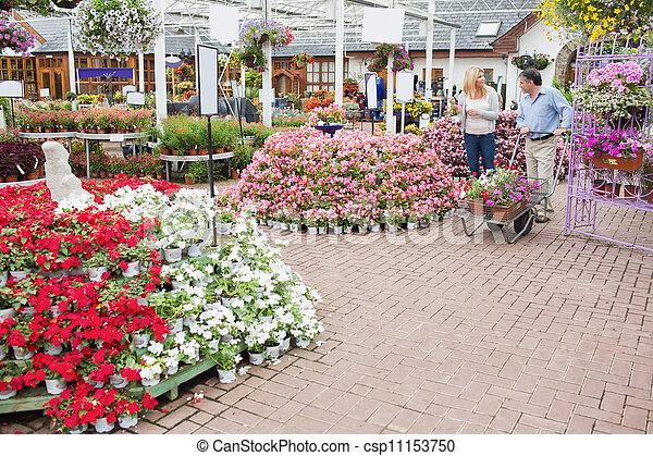 Banco de imagens de plantas jardim muitos exterior - Tipos de plantas de exterior ...