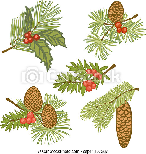Evergreen Stock Illustration Images. 13,828 Evergreen ...
