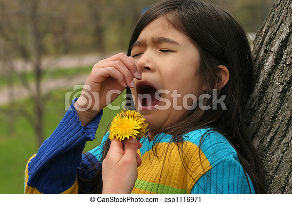Allergies - csp1116971