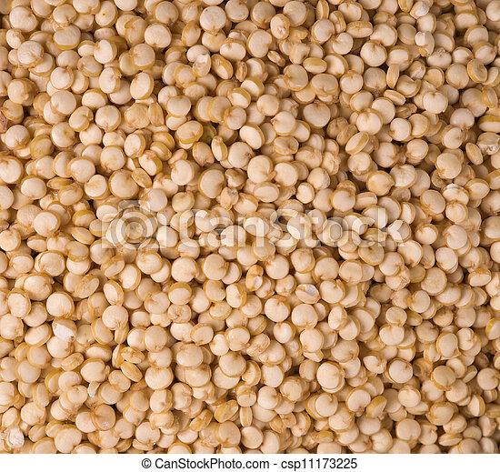 Stock fotos de comestible sano quinoa semilla plano - Graine de lupin comestible ...